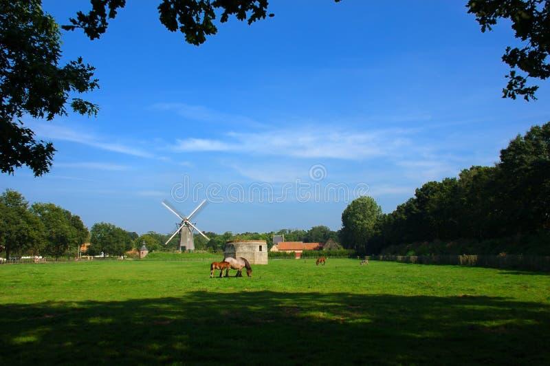 Eine landwirtschaftliche Szene mit einer Windmühle. lizenzfreie stockbilder