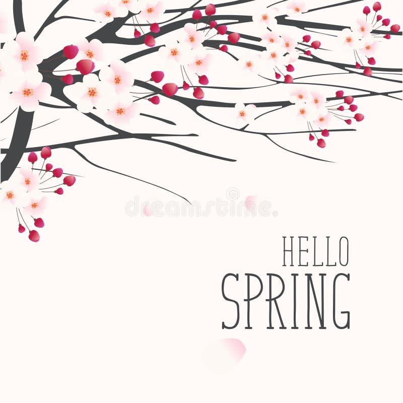 Eine leichte Frühlingslandschaft mit blühendem Baum lizenzfreie abbildung