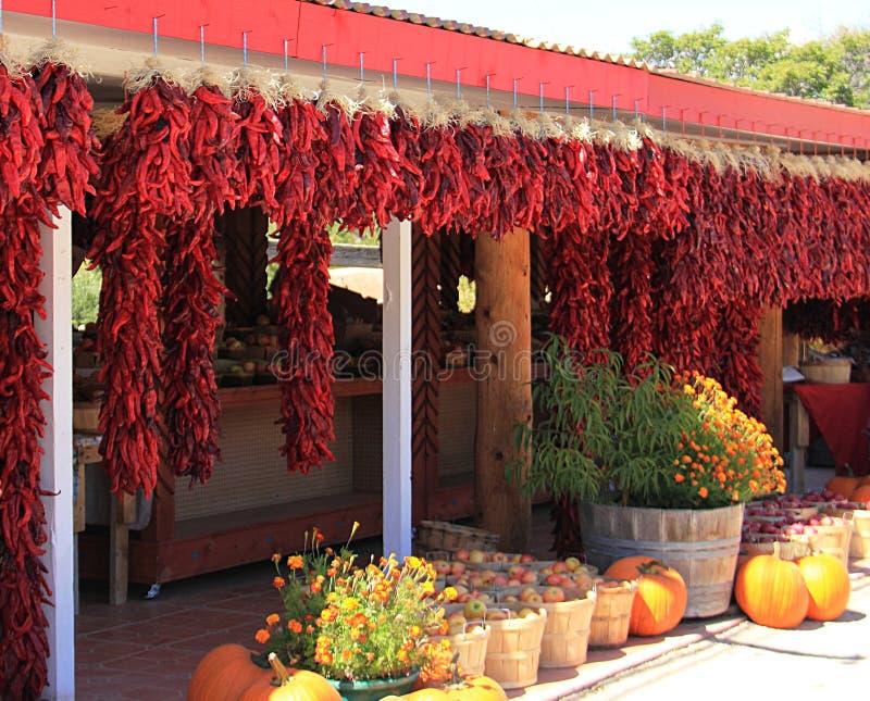 Eine Linie von roten getrockneten Bündeln Paprikas stockfotos