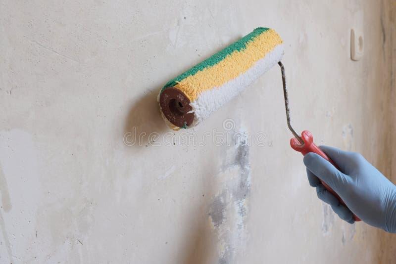 Eine m?nnliche blau-behandschuhte Hand bereitete eine Betonmauer mit einer Rolle vor Das Konzept der Hauptreparatur, Fertigungsar stockfotografie