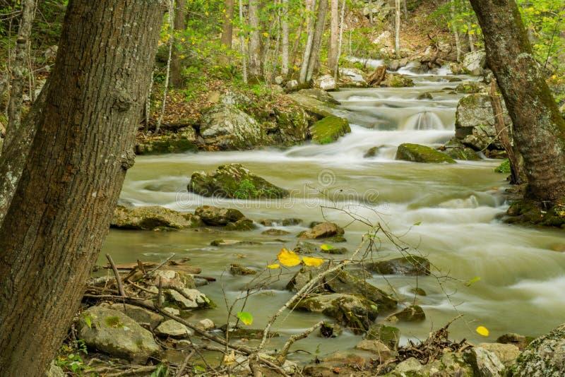Eine magische Ansicht des Brüllens des Laufnebenflusses stockbild