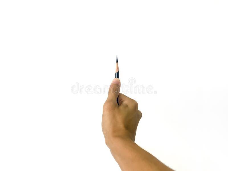 Eine Mannhand, die einen sehr scharfen Bleistift mit seinem Daumen in lokalisiertem weißem Hintergrund hält stockbilder