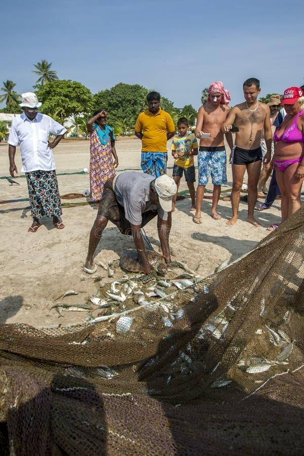 Eine Meeresschildkröte wird aus dem Fischnetz freigesetzt stockfotografie