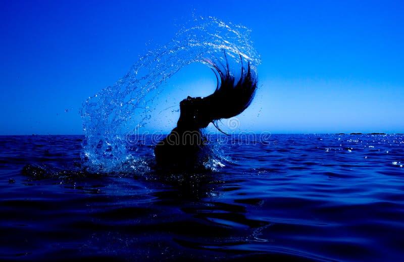 Eine Meerjungfrau taucht vom Meer u. vom x28 auf; 15& x29; stockfotografie