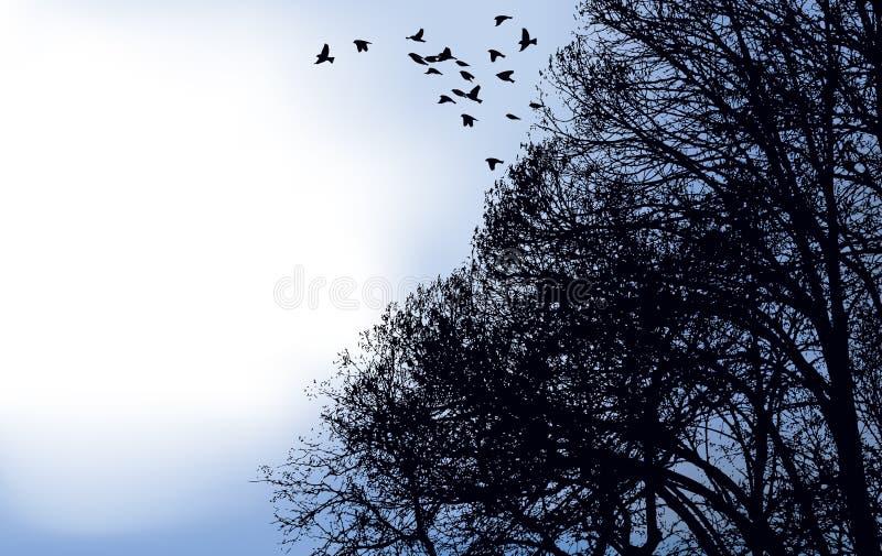 Eine Menge der Vögel flog weg von den Zweigen vektor abbildung