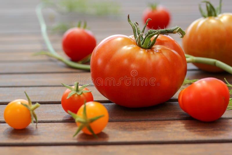 Eine Mischung von selbstgezogenen reifen Tomaten auf der dunklen Tabelle lizenzfreie stockbilder
