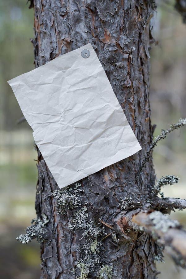 Eine Mitteilung, ein Buchstabe, eine Mitteilung auf einem Baum im Wald stockfoto