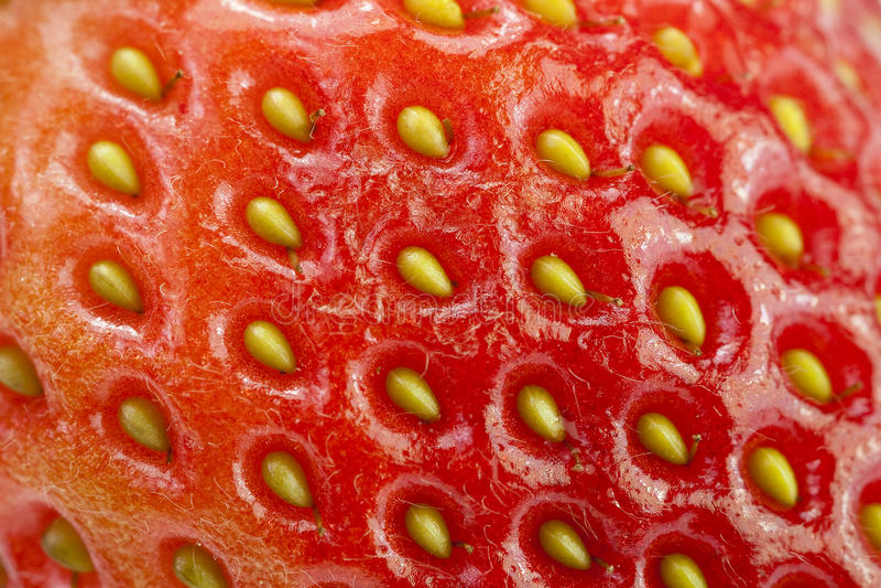 Eine Nahaufnahme einer rohen Frucht-Erdbeere-Beschaffenheit lizenzfreies stockbild