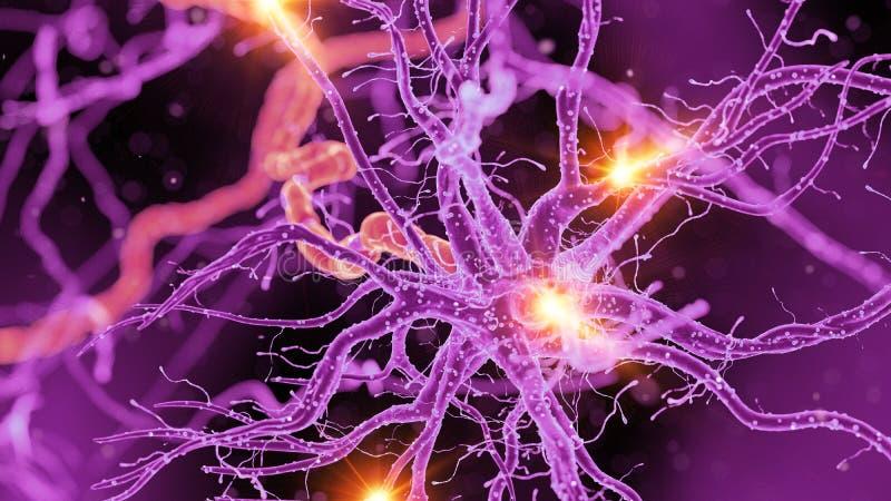 Eine Nervenzelle stock abbildung