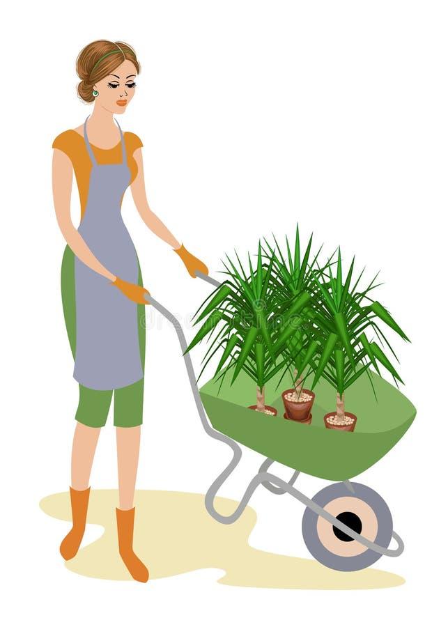 Eine nette Dame in der Arbeitskleidung Das Mädchen trägt eine Gartenschubkarre mit Blumentöpfen mit einer Yuccaanlage Eine Frau a lizenzfreie abbildung