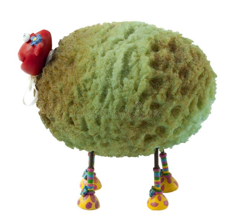 Lokalisierte Schafe lizenzfreie stockfotografie