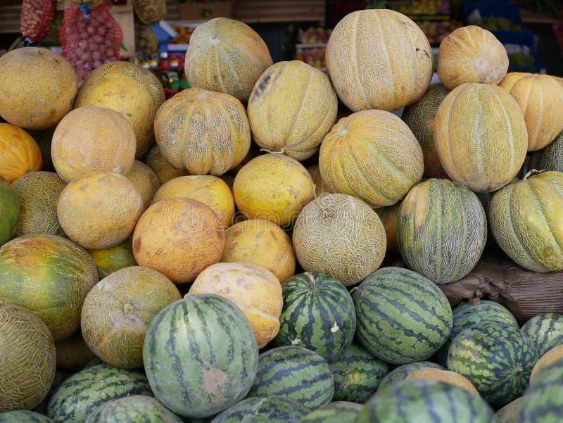 Eine neue Kultur von Wassermelonen und Melonen große reife Wassermelonen und gelbe Melonen auf einer Landwirtschaftsmesse an sonn lizenzfreie stockfotografie