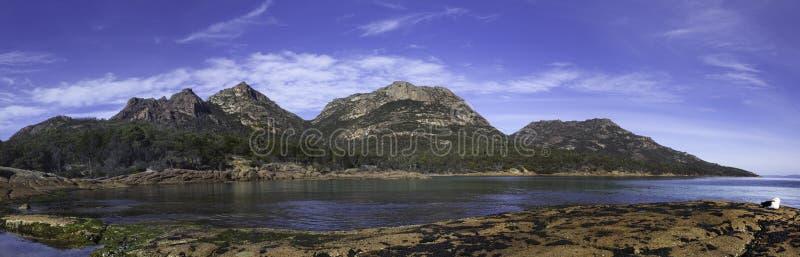 Eine pazifische Möve sitzt auf Felsen vor einem Panorama der Flitterwochen-Bucht, der Mt-Amos und der Gefahrenstrecken, Nationalp lizenzfreie stockbilder