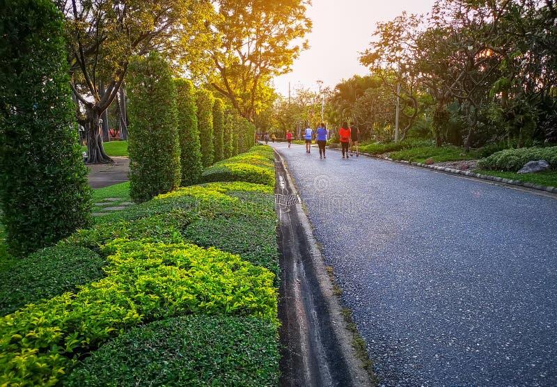 Eine r?ttelnde Bahn in einem Garten des allgemeinen Parks unter Gr?nb?umen, Strauch und Busch, Leute, die bunten T-Shirt Betrieb  lizenzfreies stockbild