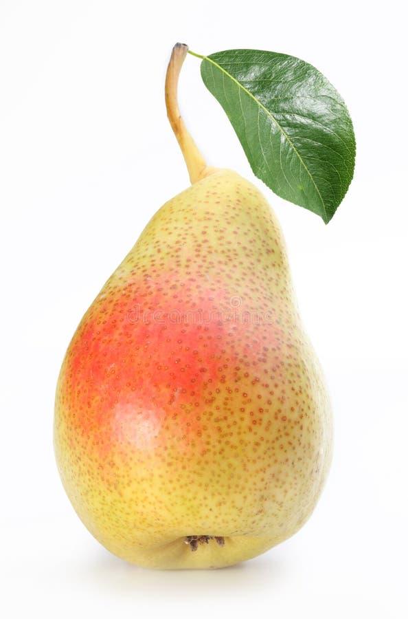 Eine reife Birne mit einem Blatt. lizenzfreies stockfoto