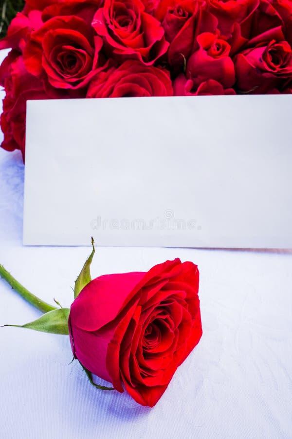 Eine Rose und eine Anmerkung für jemand speziell lizenzfreies stockbild
