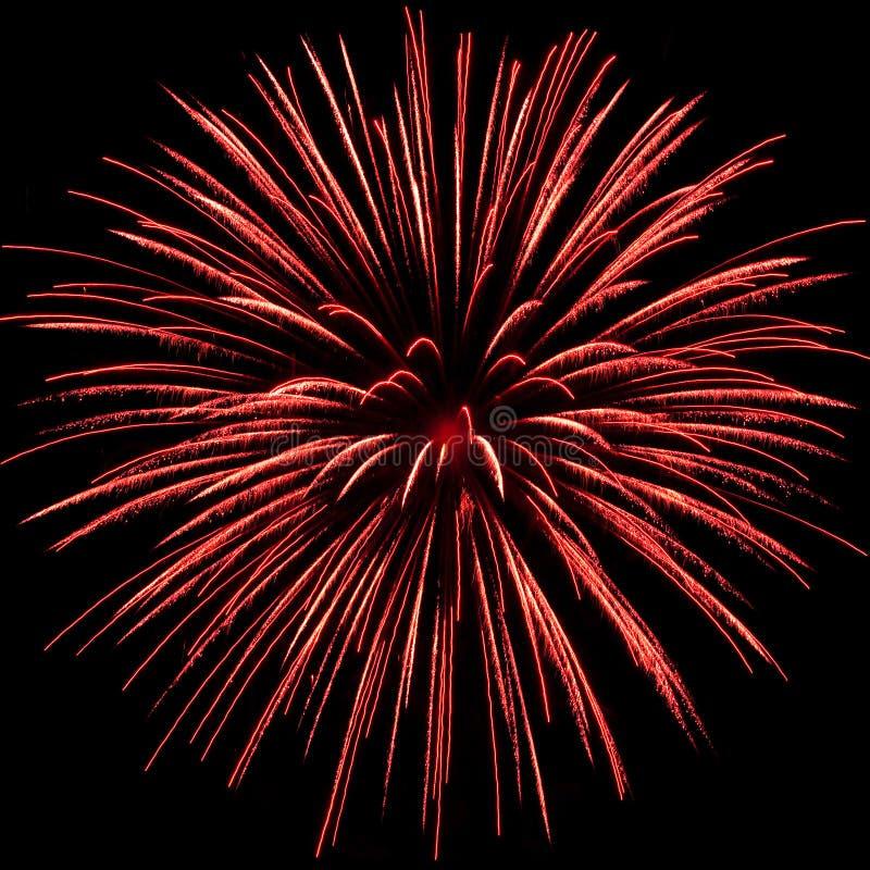 Eine rote Feuerwerkexplosion lizenzfreie stockfotografie