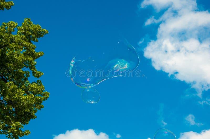 Eine runde Seifenblase auf dem blauen Himmel, mit B?umen im Hintergrund Seifenblase gefangen kurz vor dem Bruch stockfoto