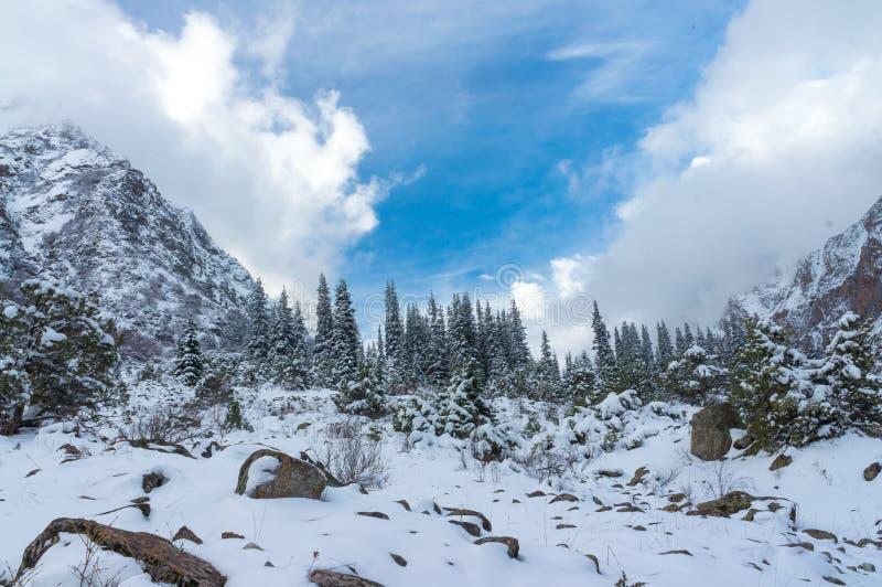 Eine schöne Ansicht der Winterberge lizenzfreie stockbilder
