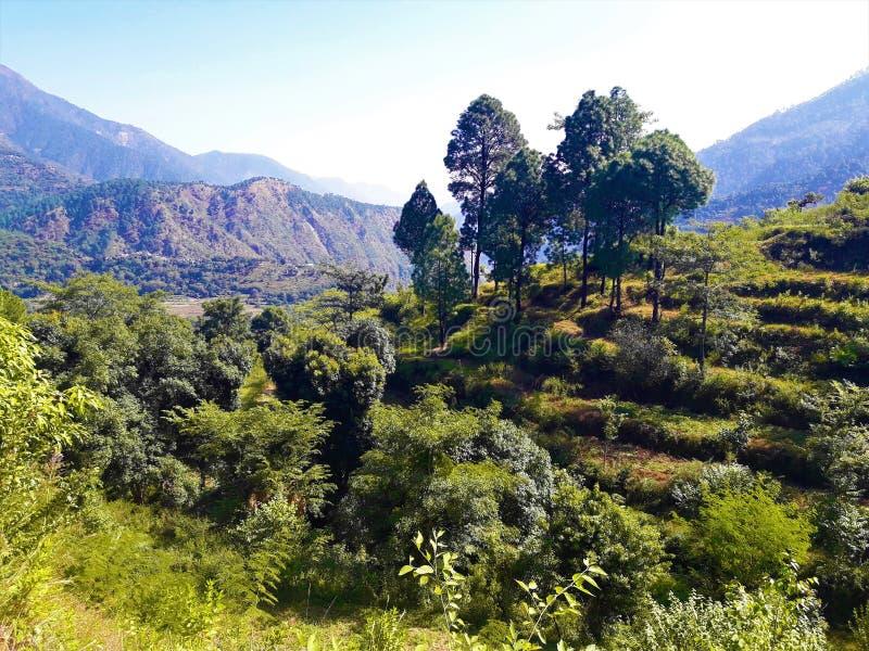 Eine schöne Ansicht von grünen Bergen stockbilder