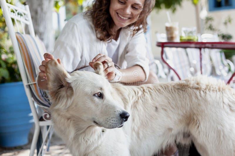 Eine schöne junge Frau spielt mit ihrem Hund, Labrador, sich berührt hallo lizenzfreie stockfotografie