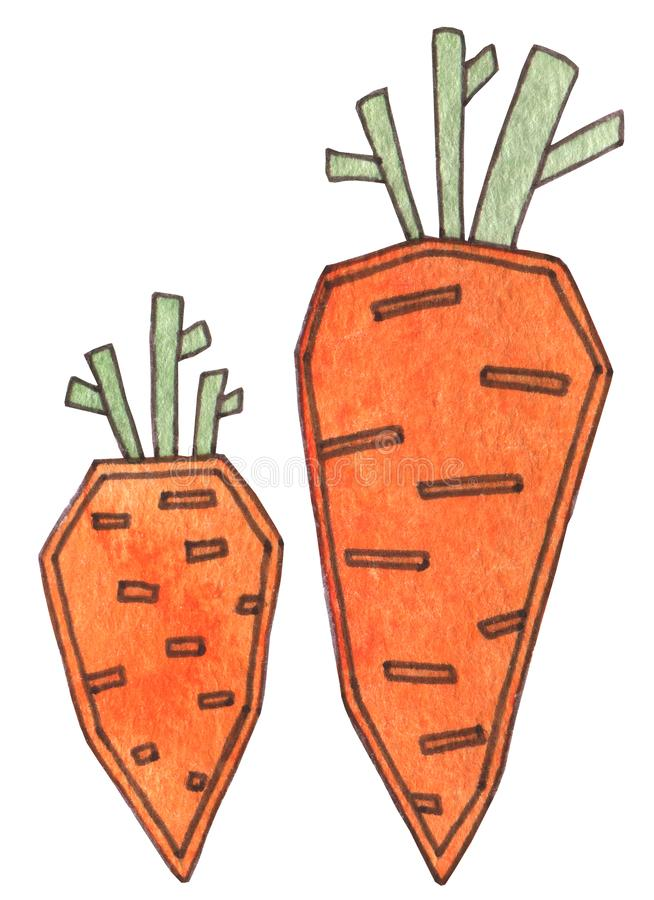 Eine schöne Karottenorange mit grünem Blatt Richtige Nahrung, strenger Vegetarier, vegetarische, organische, gesunde Nahrung Fris lizenzfreie abbildung