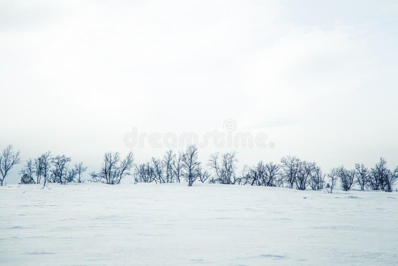 Eine schöne Landschaft von gefrorene Ebenen an einem Tag des verschneiten Winters lizenzfreie stockfotos