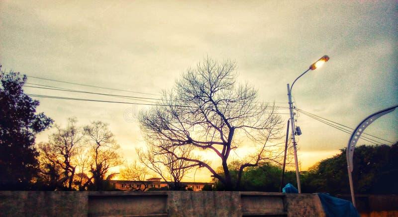 Eine schöne Sonne eingestellt hinter die Bäume stockfotos