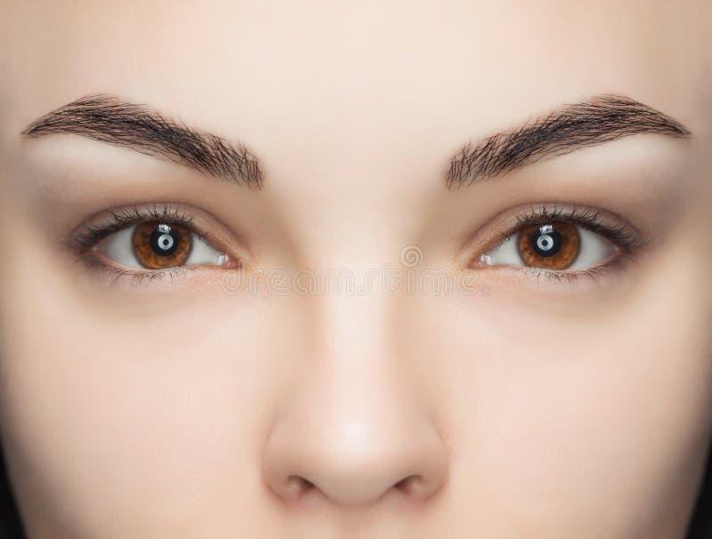 Eine Schönheit mit den unextinguished Wimpern in einem Schönheitssalon lizenzfreies stockfoto