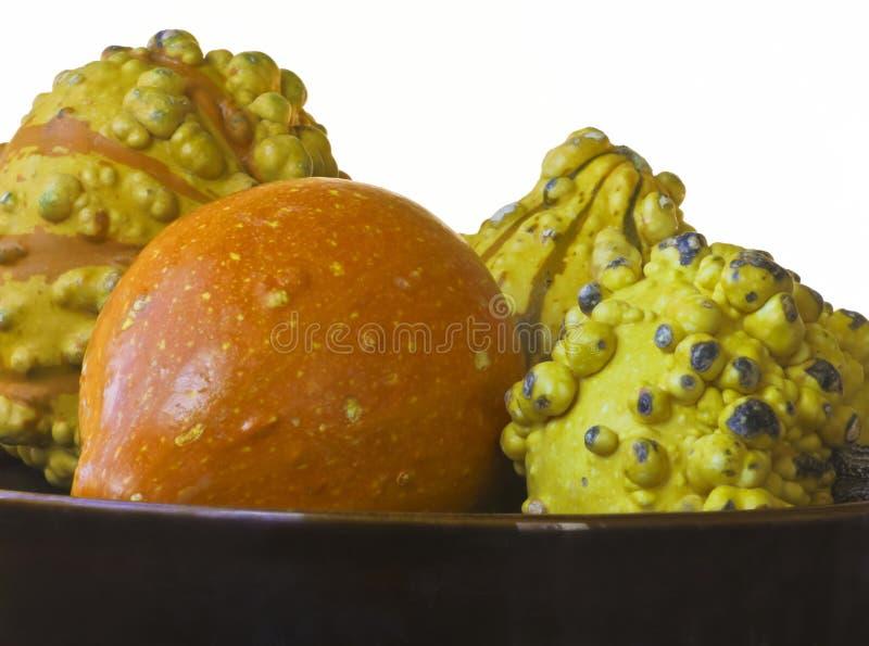 Eine Schüssel orange und gelbe dekorative Kürbisse stockfotografie