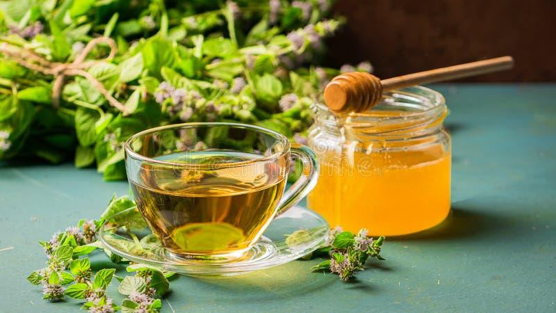 Eine Schale frischer Tee mit tadellosen Blättern der Melisse auf einem rustikalen Hintergrund Heilenkräutergetränk Horizontaler R lizenzfreies stockfoto