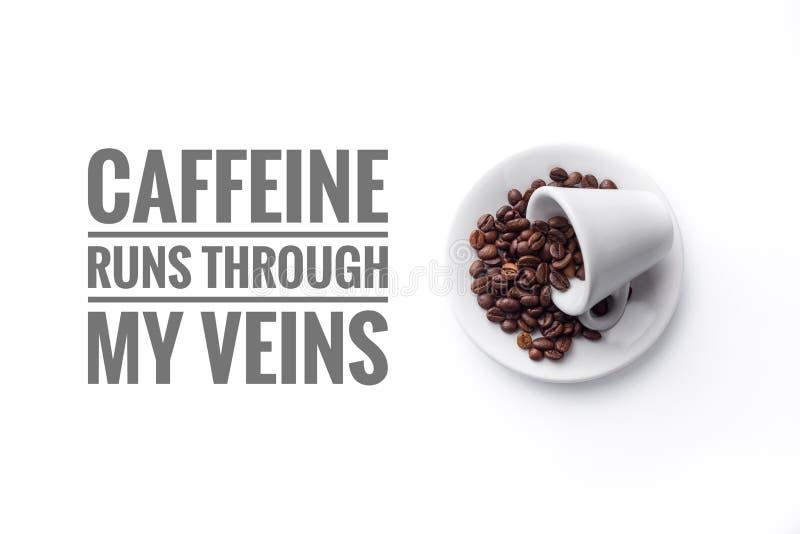 Eine Schale gefüllt mit Kaffeebohnen auf weißen Hintergrund und Mitteilung ` KOFFEIN-LÄUFEN DURCH MEIN ADERN ` lizenzfreie stockfotos