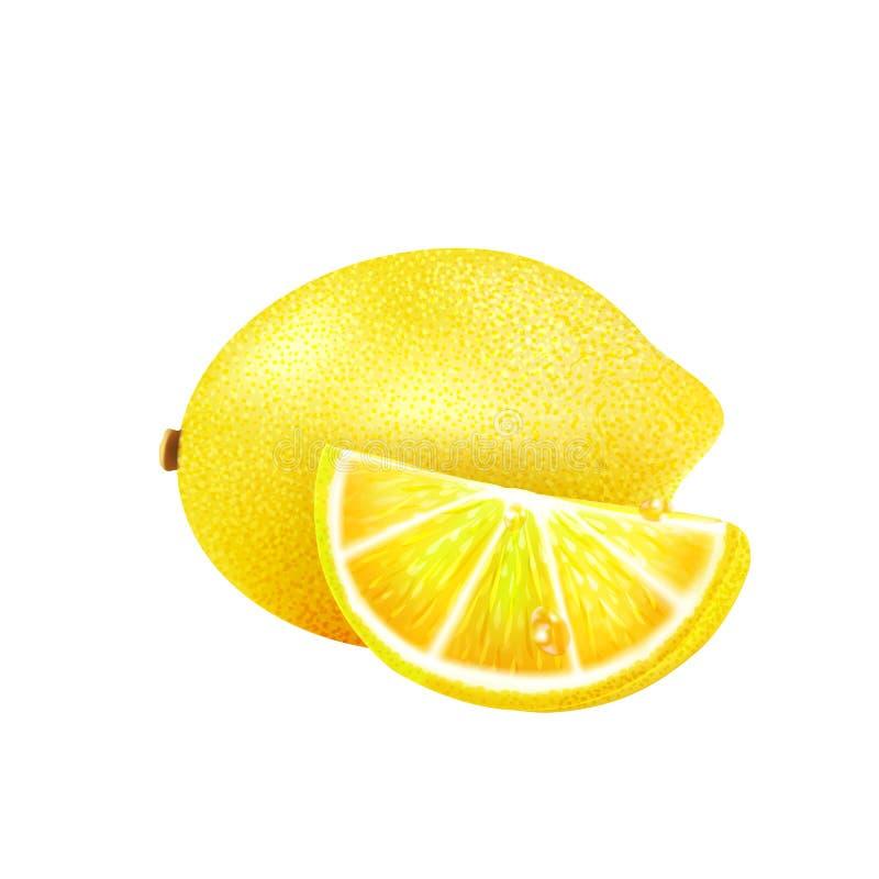 Eine Scheibe der Zitrone auf einem wei?en Hintergrund stock abbildung