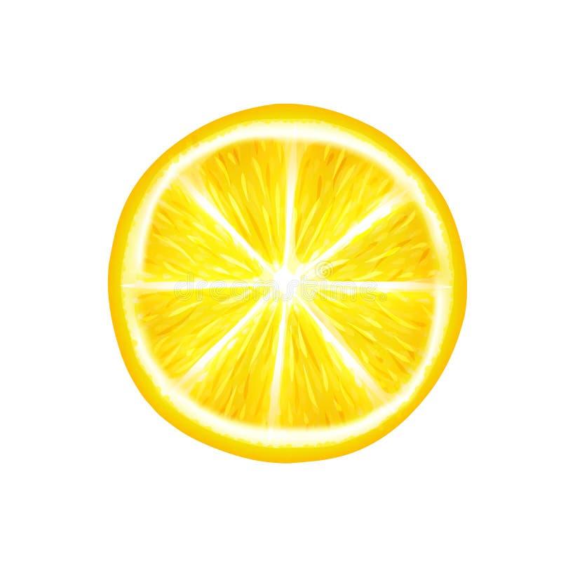 Eine Scheibe der Zitrone auf einem wei?en Hintergrund lizenzfreie abbildung