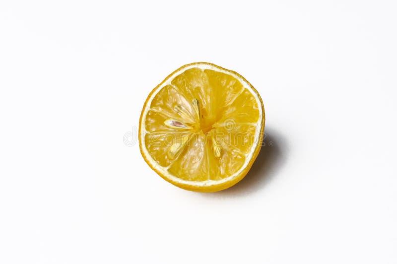 Eine Scheibe gelbe ZitronenZitrusfrucht lokalisiert auf weißem Hintergrund, Kopienraum stockfotografie