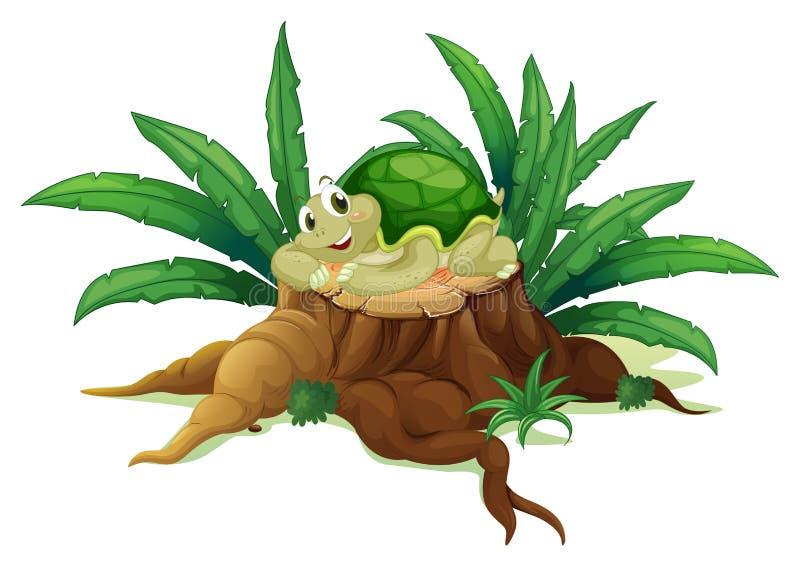 Eine Schildkröte über einem Stamm lizenzfreie abbildung