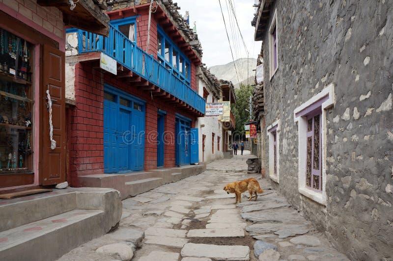 Eine schmale Straße in einer Stein-gepflasterten Straße im Dorf von Kagbeni, des Königreich-Mustangs, Nepal stockfoto