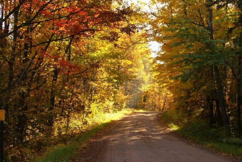 Eine Schotterstraße im Herbst umgeben durch Bäume mit gelben Blättern, roten Blättern, grünen Blättern und grünem Gras nahe Hinck stockfotografie