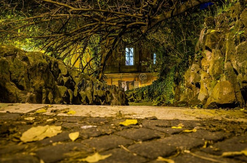 Eine schreckliche Straße mit Treppe in den Nachtparkpflastersteinen gepflastert mit Steinbalustrade in den Bäumen mit Lichtstraße stockbild