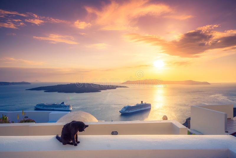 Eine schwarze Katze auf einer Leiste bei Sonnenuntergang an Fira-Stadt, mit Ansicht des Kessels, des Vulkans und der Kreuzschiffe stockbild