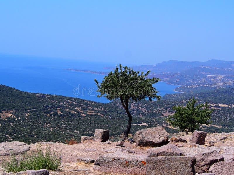 Eine Seeansicht vom Tempel von Athene lizenzfreie stockfotos