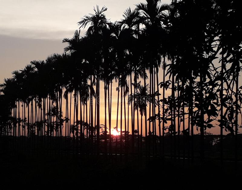 Eine Sonne des guten Nachmittages im Westen lizenzfreies stockfoto