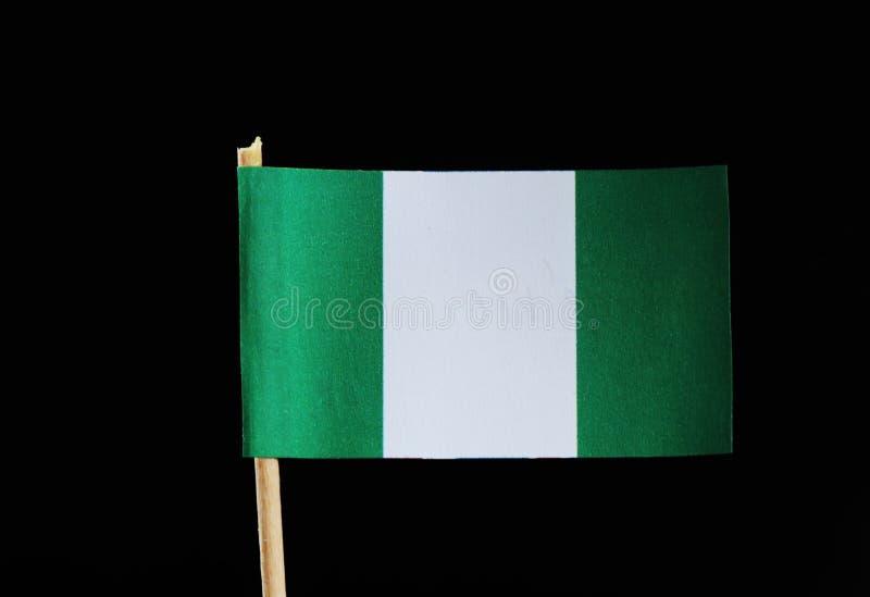 Eine Staatsflagge von Nigeria auf Zahnstocher auf schwarzem Hintergrund Nigerische Flagge grüne und weiße Farbe enthalten lizenzfreie stockbilder