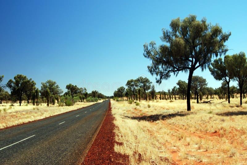 Eine Straße durch spinifex Ebenen lizenzfreies stockfoto