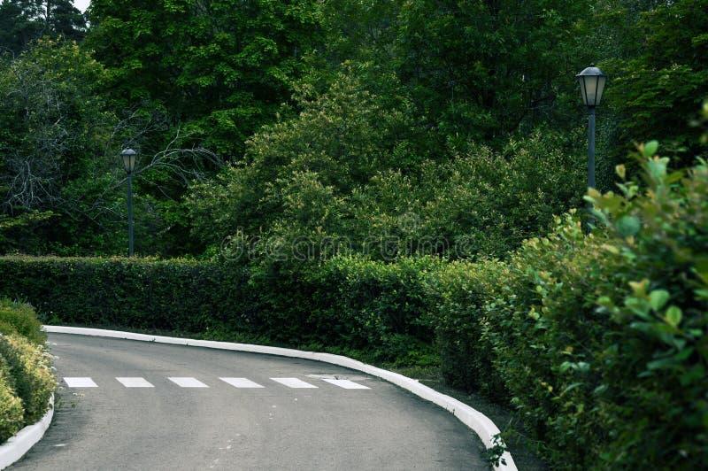 Eine Straße mit einem gemalten Fußgängerübergang, der eine Wendung umgeben durch einen Garten macht lizenzfreies stockbild