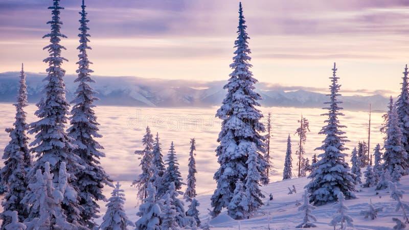 Eine szenische Ansicht von Flachkopfsee von Blacktail-Berg stockbild