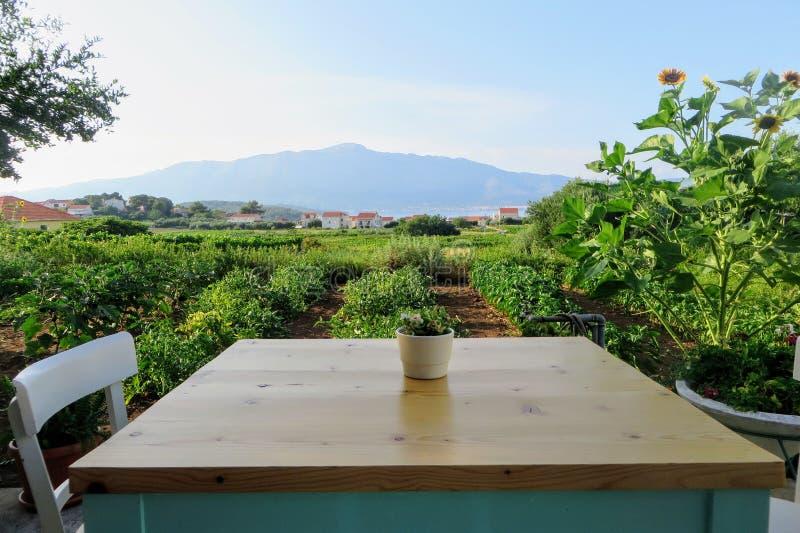 Eine Tabelle, damit ein Platz neben einem ausbreitenden Weinweinberg zu Abend isst, der die lokalen grk Trauben mit der Kleinstad stockfoto