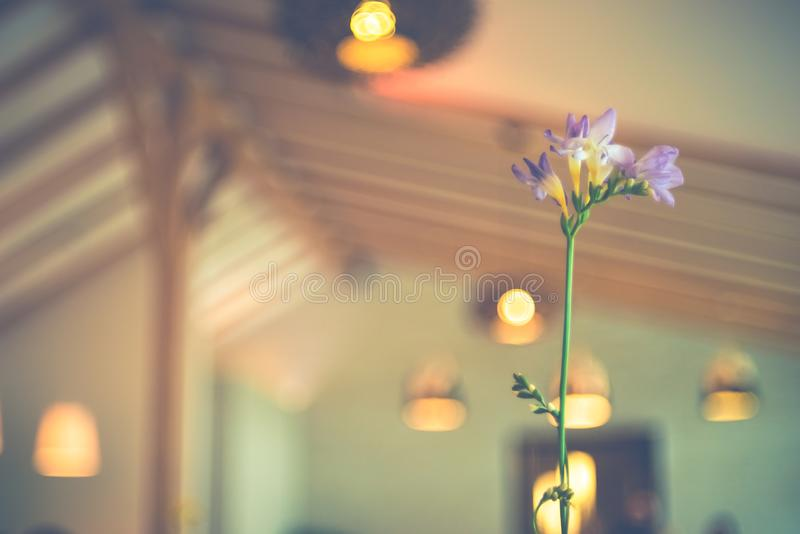Eine Tabellenblume in einer Kaffeestube stockfotos