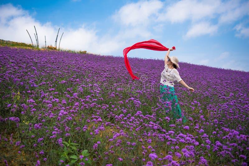 Eine Tanzen-Frau auf dem erstaunlichen großen Lavendel-Gebiet lizenzfreie stockfotos