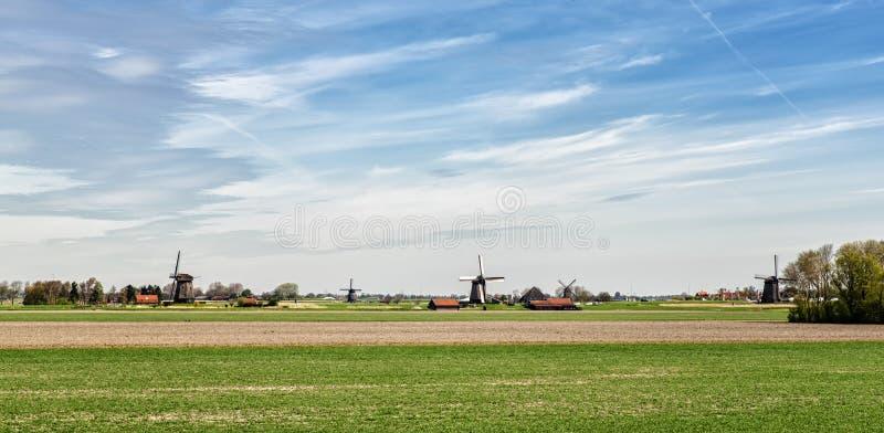 Eine typische holländische Landschaft stockbild